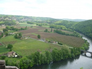 This is one of the views from the castle.
