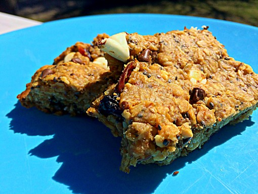 Easy Trek Bars That Are Sweet and Fun To Eat